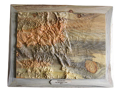 Carved Colorado Topographical Map